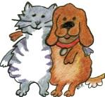 cat-dog
